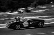 Austin Healey 1956 - Marc Blachere